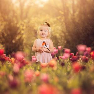 Tulip 2 a.jpg