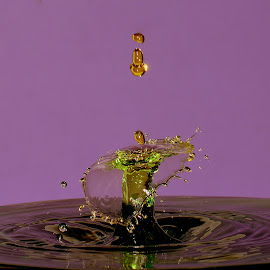 Golden waterdrops by Fred Øie - Abstract Water Drops & Splashes ( abstract )