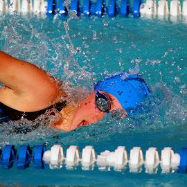 Triple Winner by Harry  Phillips - Sports & Fitness Swimming (  )