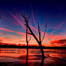 Chem trails by Derrill Grabenstein - Landscapes Sunsets & Sunrises