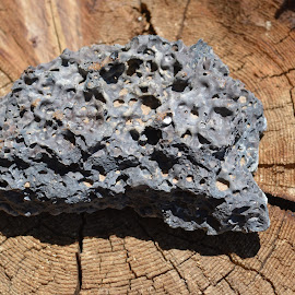 Lava rock by Heather Walton - Novices Only Objects & Still Life ( lava, rock, dirt, holes, formation )