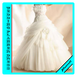 wedding planner dress