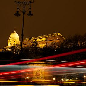 Buda Castle by Claudiu Bichescu - Buildings & Architecture Public & Historical ( budapest )