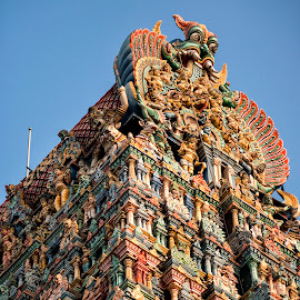 Hindu Temple by Stanley P. - Buildings & Architecture Other Exteriors ( architecture )