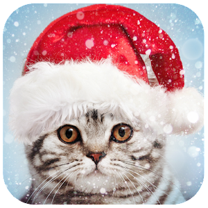 A huge collection of beautifully designed Christmas photo frames and effects! APK Icon