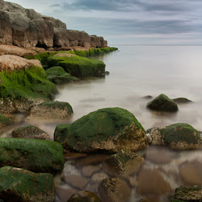 Paletta Beach by Elvis Dorencec - Landscapes Waterscapes ( lake ontario, paletta, burlington, rocks )