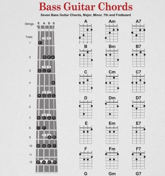 Bass Guitar Chords Apk 10 Download Free Music Audio Apk Download