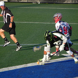 Pick up by Kathryn Nagelberg - Sports & Fitness Lacrosse ( boston cannons, ny lizards, lacrosse )