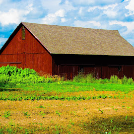Firebelly Farm near Mt. Morris, IL. by Nancy Gray - Buildings & Architecture Other Exteriors