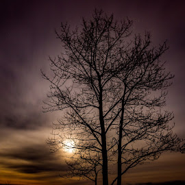 The Cloudy Night Sky by Sarah Scully - Landscapes Cloud Formations ( minnesota, moon, stars, long exposure, night, duluth minnesota, landscapes )