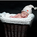 Baby Wallpaper 2019 Icon