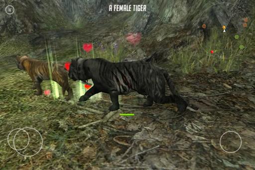Life Of Black Tiger FREE screenshot 7