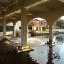 Bridge in Florida by Suzette Christianson - Buildings & Architecture Bridges & Suspended Structures