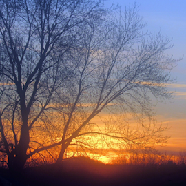 March Sunset by Cathy Elliott-Burcham - Novices Only Landscapes ( spring, sunset, silhouette, skyscape, evening,  )
