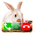 Free Call Prank Easter Bunny APK for Windows 8