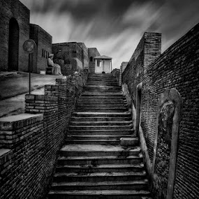 All the way by Allen Adnan - Buildings & Architecture Other Exteriors ( abstract, walking, old, b&w, exterior, black and white, street, travel, architecture, erbil, iraq, photography, stairs, ancient, inspiration, leading, lines, long exposure, nikon, design )