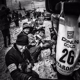 Iditarod 2016 • Dog Handlers by Wes Calimer - Animals - Dogs Playing ( iditarod 2016  dog handlers sled dog mush snow alaska )