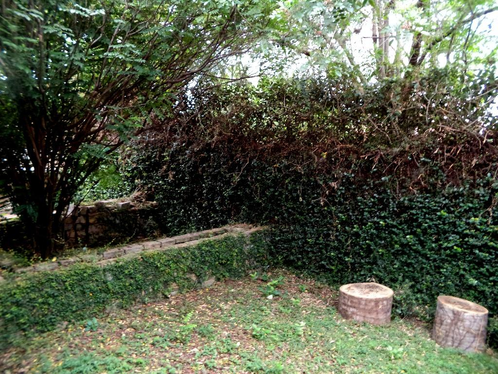 Casa 5 Dorm, Cidade Universitária, Campinas (CA1218) - Foto 17