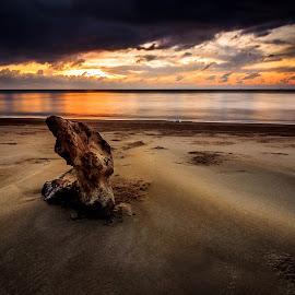 The Thinker by Gerard Macorvick - Landscapes Sunsets & Sunrises ( sunset, seascape, storm )