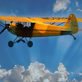 Yellow BiPlane  by Lorraine D.  Heaney - Transportation Airplanes