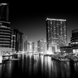 Dubai Marina Night View by Amr Younis - Buildings & Architecture Office Buildings & Hotels ( building, night photography, black and white, dubai marina )