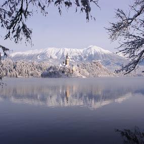 winter bled by Mrak Rado- Fotograf - Landscapes Travel ( hills, winter, lake bled church, slovenia, bled, lake )