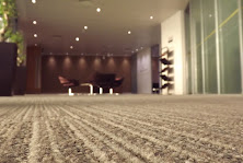 Well Maintained Clean Carpet Fibres