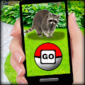 Descargar Pocket Animals GO 1.01 APK