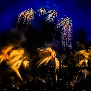 2137 jpg. Firework Jul-9-17-2137.jpg