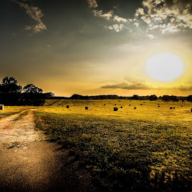 Rollin hay by Joseph Baker - Landscapes Prairies, Meadows & Fields ( farm, pasture, sunset, hay, hay bails )