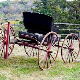 Vintage Ride by Deborah Lucia - Transportation Other ( buggy, vintage, wheels )