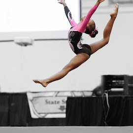 Gymnast's Leap of Faith by Arnold Ward - Sports & Fitness Other Sports ( gymnastics )