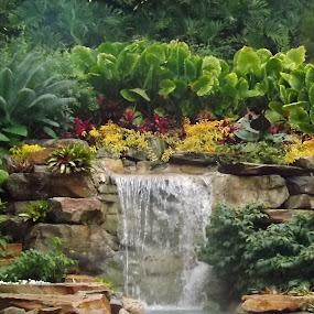 Beautiful! by Zach Church - Nature Up Close Gardens & Produce