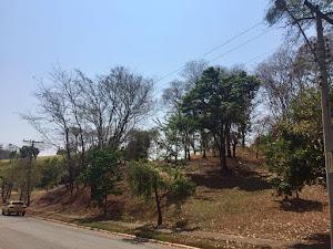 Terreno  residencial à venda, Sítio de Recreio Mansões Bernardo Sayão, Goiânia. - Residencial Aldeia do Vale+venda+Goiás+Goiânia