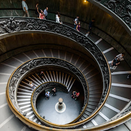 Giuseppe Momo Staricase by César Cota - Buildings & Architecture Public & Historical ( stairs, giuseppe momo, museum, vatican )