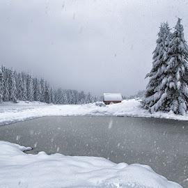 Winter pond by Stanislav Horacek - Landscapes Weather