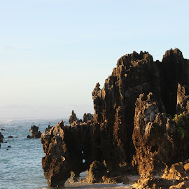 Pinnacles on The Nauruan Reef by Bivash Mondal - Landscapes Caves & Formations ( the rocks on reef: nauru, the rocks and the reef, the nauru island and the rocks, the reef, the sunrays on the pinnacles: nauru )