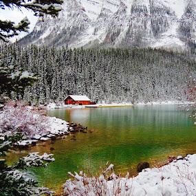 lake louise . Canada  by Pamela Zeng - Landscapes Mountains & Hills (  )
