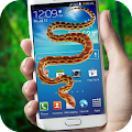 Snake in Screen Prank APK for Kindle Fire