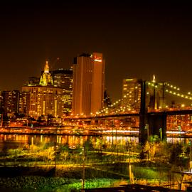 Brooklyn Night Scenes by Joseph Law - City,  Street & Park  Night ( lighting, night scene, buildings, trees, reflections, bridge, brooklyn )