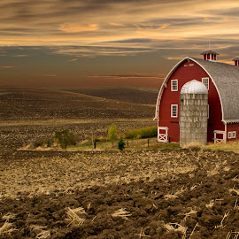Heidenreich Dairy Barn by Brent Huntley - Buildings & Architecture Other Exteriors ( washington, palouse, barn, sunset, heidenreich, dairy, colfax,  )