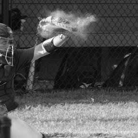 by Lena DeStefano - Sports & Fitness Baseball
