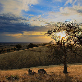 Mt Major Sunset by Susan Marshall - Landscapes Prairies, Meadows & Fields ( hills, sunset, tree sunset field, meadow, landscape,  )