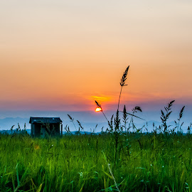 Taller Than I by Ynon Francisco - Landscapes Prairies, Meadows & Fields ( clouds, grass, hut, colors, silhouette, shack, dusk, tarlac, sun, mountains, sky, blades, shelter, shadow, cottage, sunset, philippines )