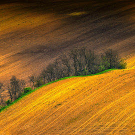 Moravia by Stanley P. - Landscapes Prairies, Meadows & Fields