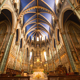 Admiring the details by Roland Bast - Buildings & Architecture Places of Worship ( canada, blue, admiring, wideview, ottawa, basilica )