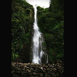 by Yudha Adillasaputra  - Instagram & Mobile Instagram ( untitled, cijalu, waterfall, scenery, fresh, green, sony )
