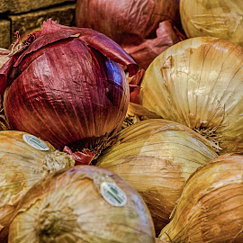 Onions by Fred Faulkner - Food & Drink Fruits & Vegetables ( onions, red, market, food, vegetables, yellow, chicago, red onion, yellow onion, produce )