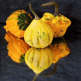 decorative pumpkins by LADOCKi Elvira - Artistic Objects Other Objects