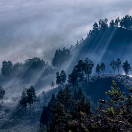 Curtain fog by Agus Sudharnoko - Landscapes Mountains & Hills